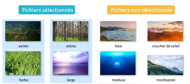 Fichiers selectionnés