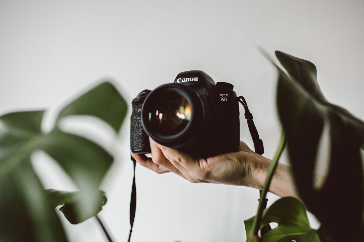 Unsplash, Pexels et Pixabay regorgent de belles images libres de droit